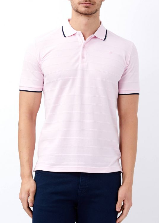 Erkek Pudra Çizgili Polo Yaka Tişört