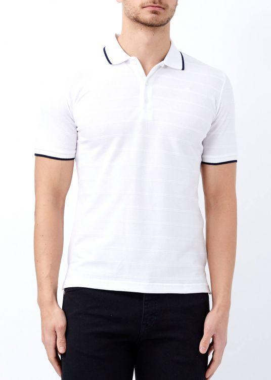 Beyaz Erkek Çizgili Polo Yaka Tişört